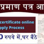 मृत्यु प्रमाण पत्र कैसे बनवाये_ Apply for Death Certificate Online