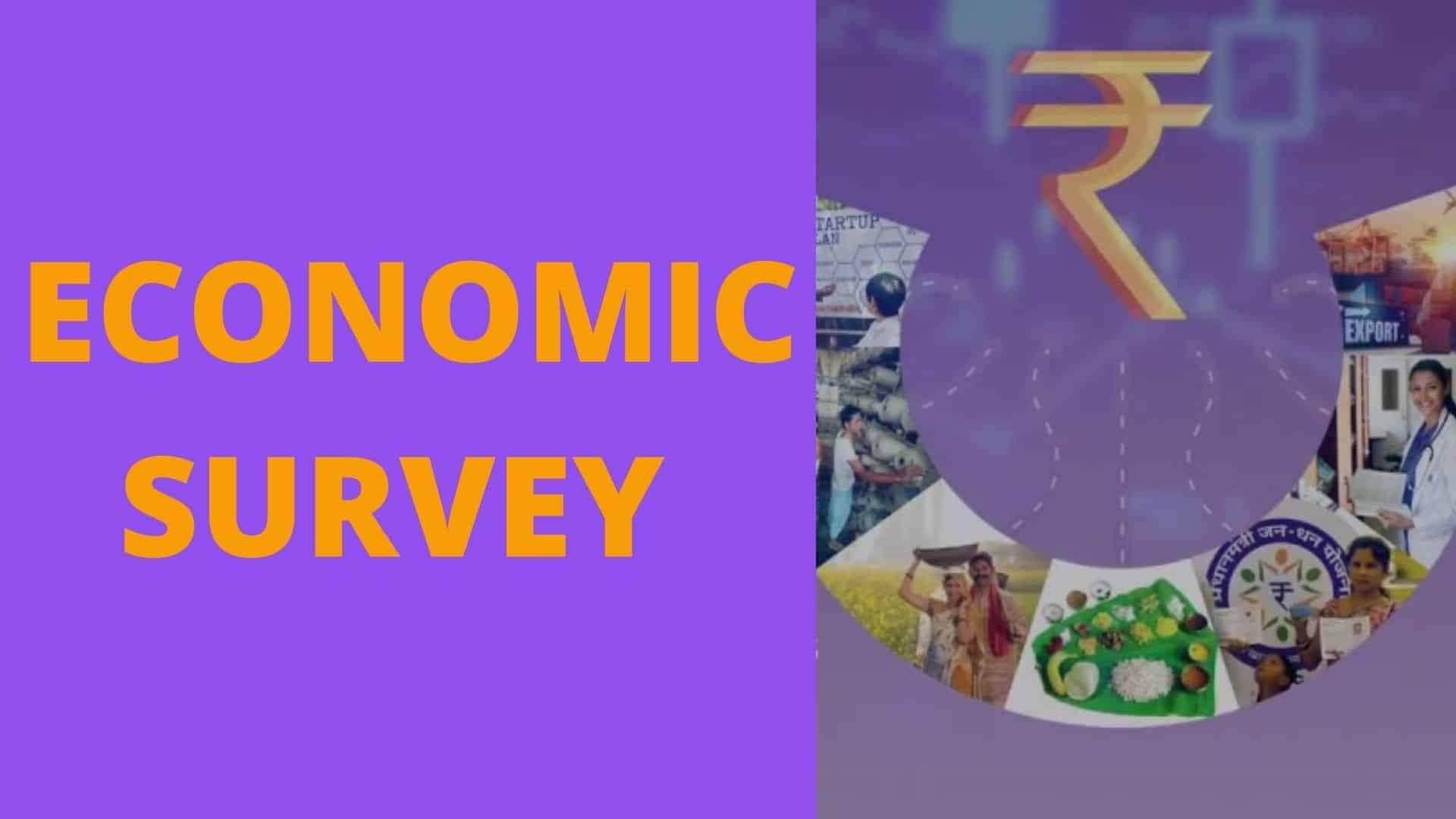 What is Economic Survey_